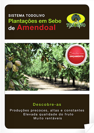Almendro_PT